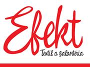Logo efektsk.sk